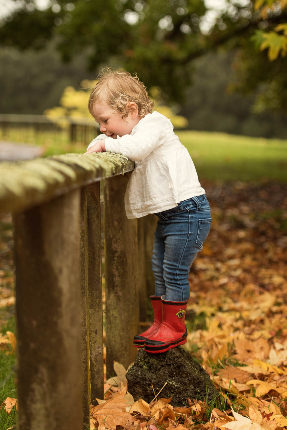 child climbing fence photography by siobhan kelly photography