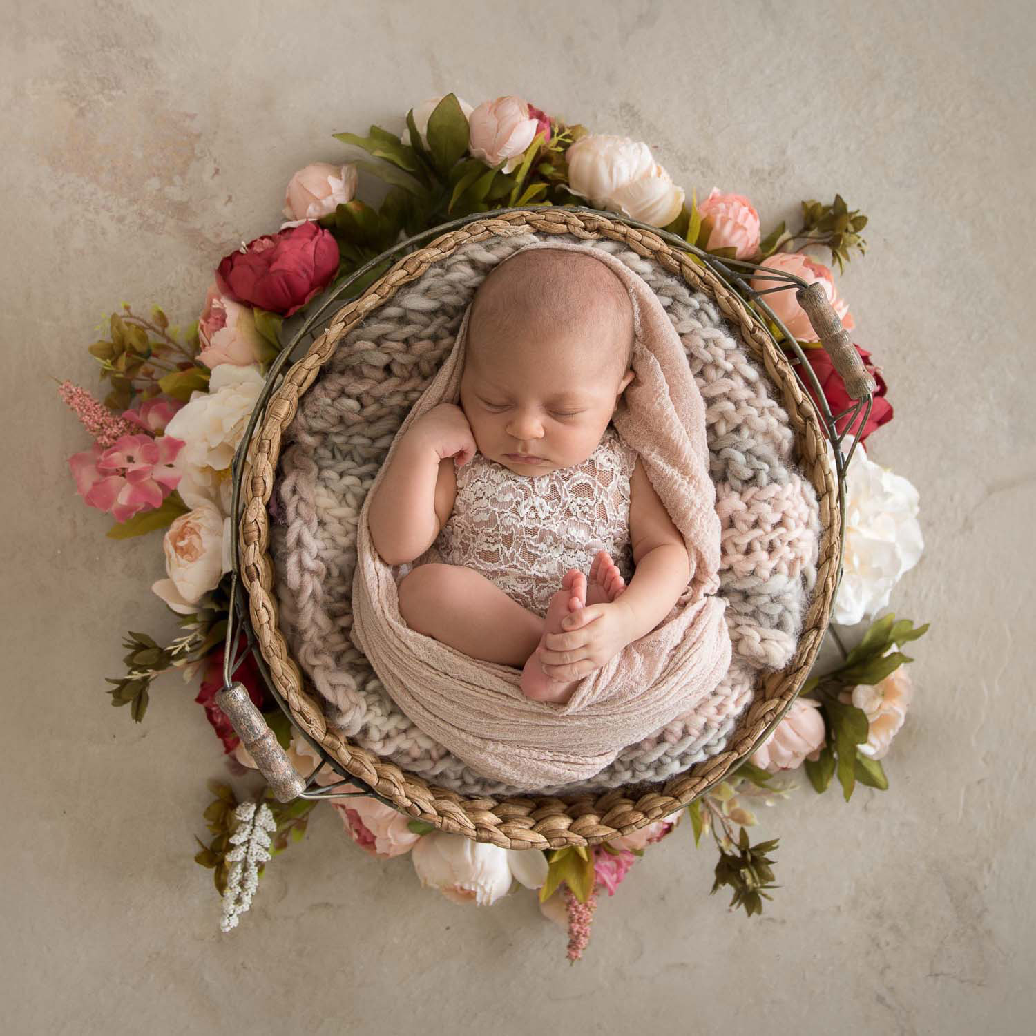 newborn photography by auckland photographer siobhan kelly