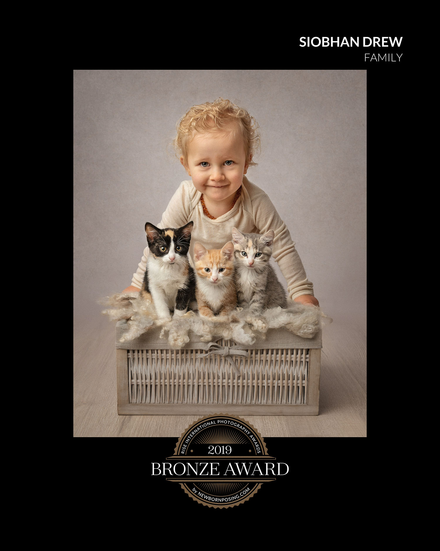 cats and toddler by auckland pet photographer siobhan kelly photography