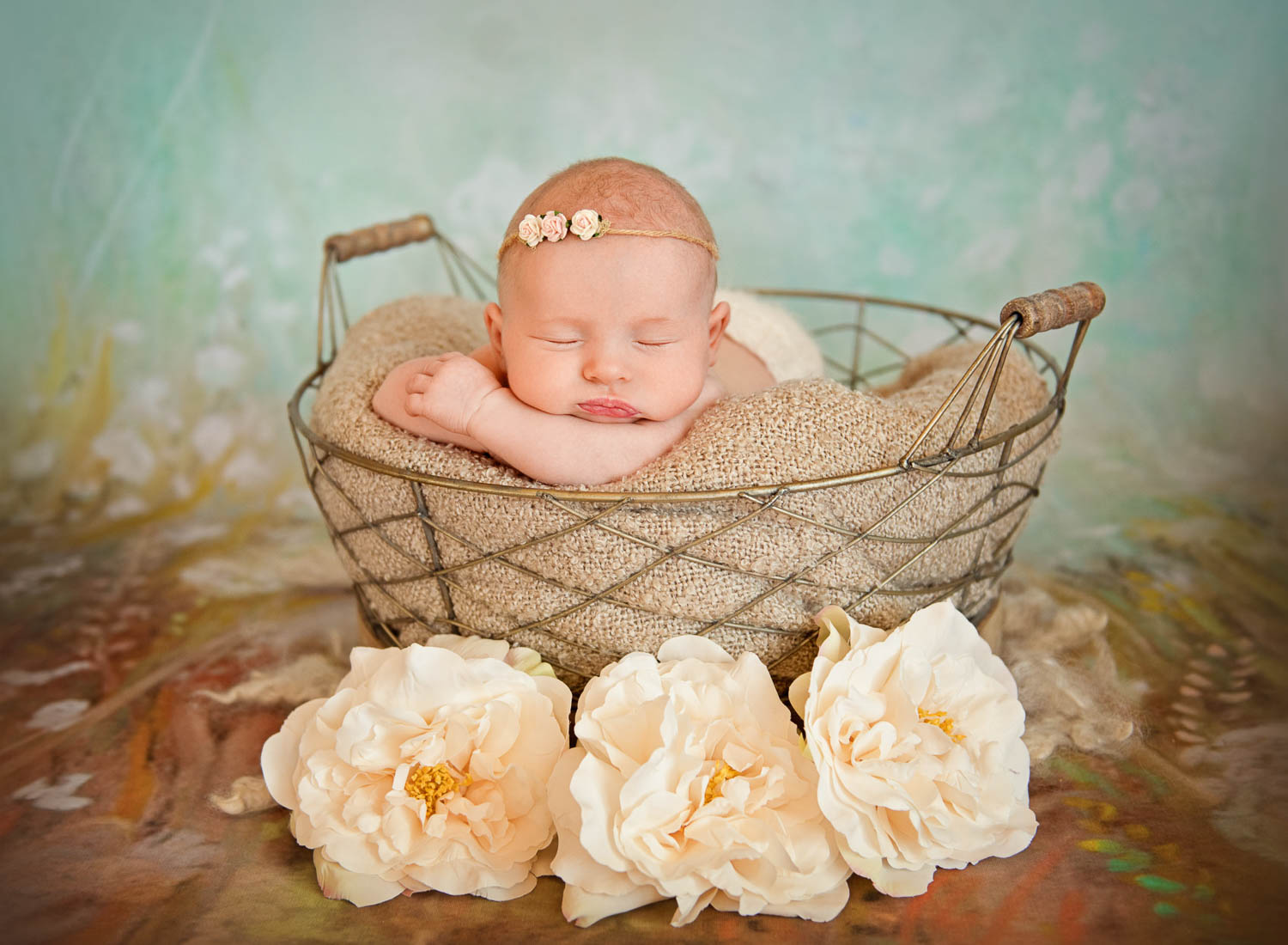 baby in basket by auckland newborn photographer siobhan kelly photography